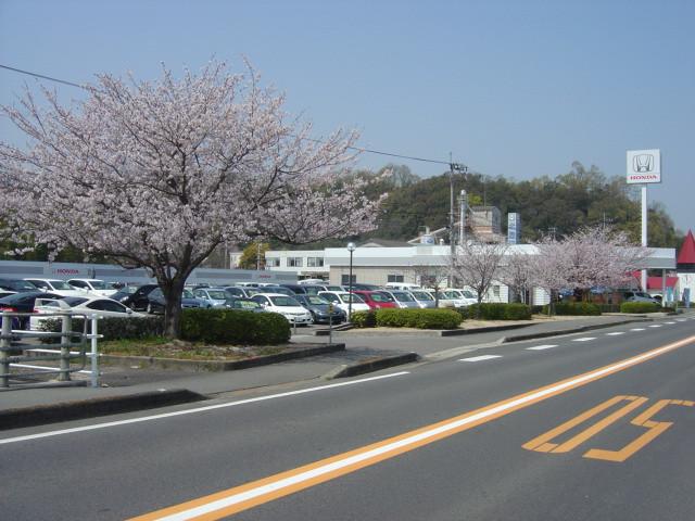[香川県]Honda Cars東かがわ 東かがわ店